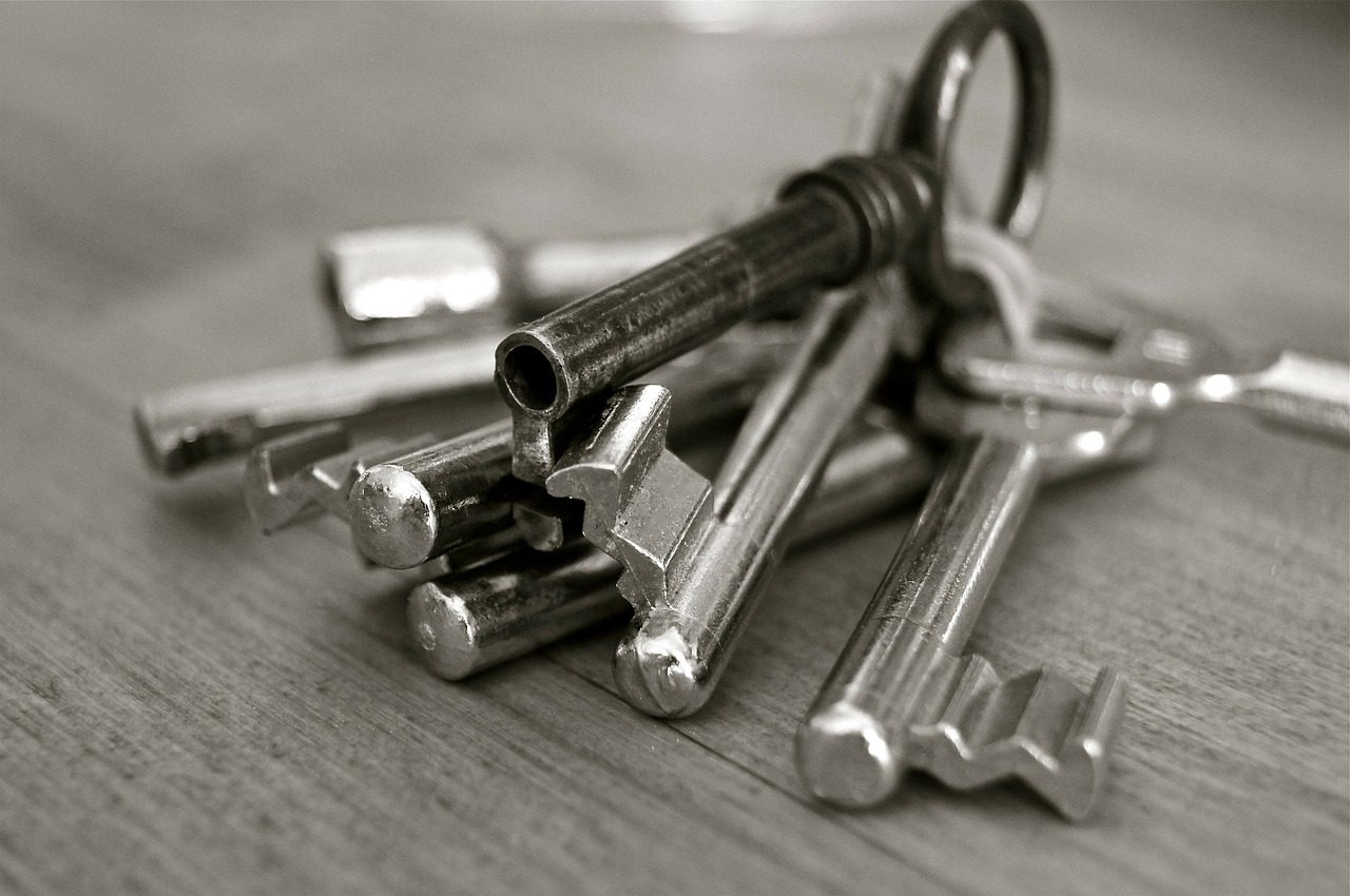 More buy-to-let landlords plan to expand their property portfolio